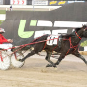 Interstate Cup trip on the cards