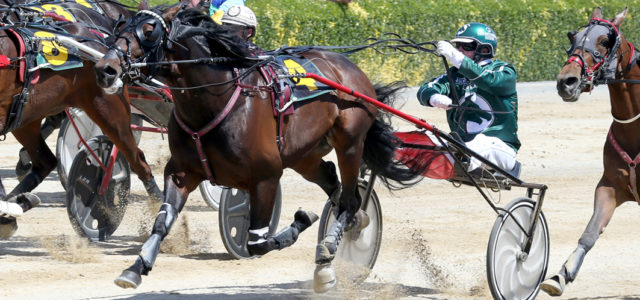 Final Trotters' Inter Dominion rankings