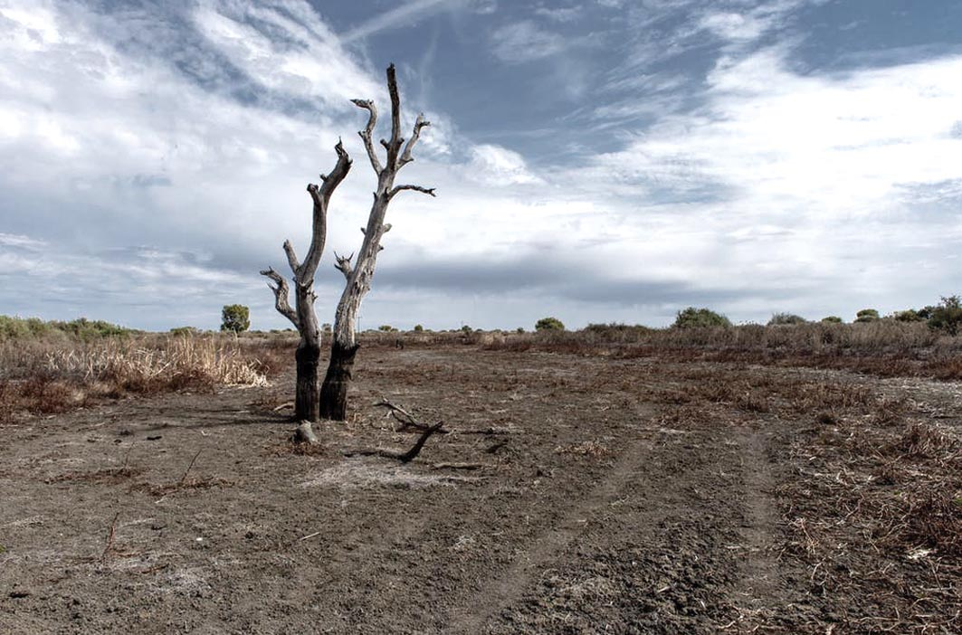 Board extending drought assistance
