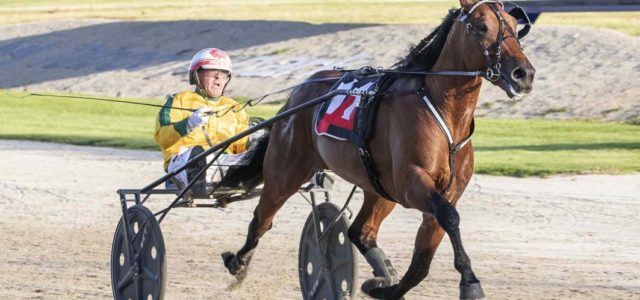 Aussie All Stars taking aim at NZ Jewels