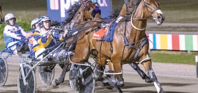 Inter Dominion numbers continue to fall