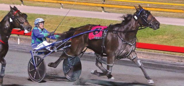 Sentimental victory for champion horseman