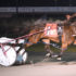 Former Aussie combined at Yonkers