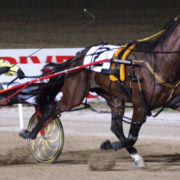 In-form pacer chasing another Cup victory