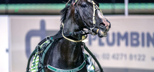 Continuing his trek towards a Group One
