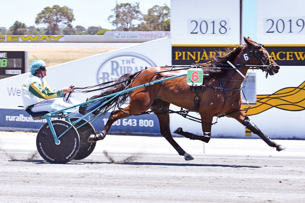 Piranha savaged Group One rivals