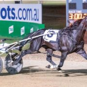 New South Wales country cups bonus