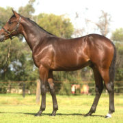 Boom filly maintains perfect record in Group One