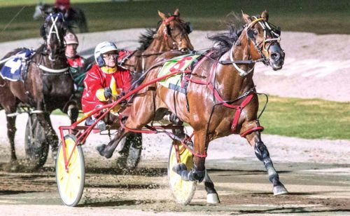 Vicbred becomes Australia's fastest pacer