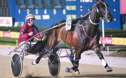 Horseman chasing sentimental win