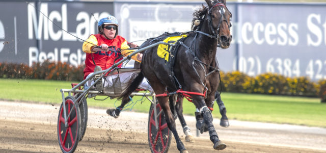 Filly out to emulate famous mother