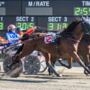 Prime opportunity for consistent trotter