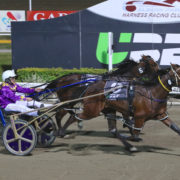 Smart filly to extend perfect season