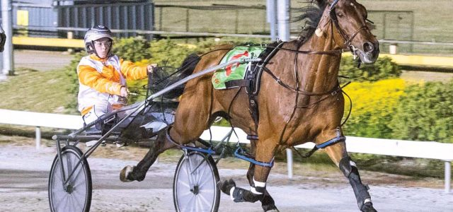 Popular Victorian draws ace in Cup