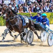 Leading stud releases stallion fees