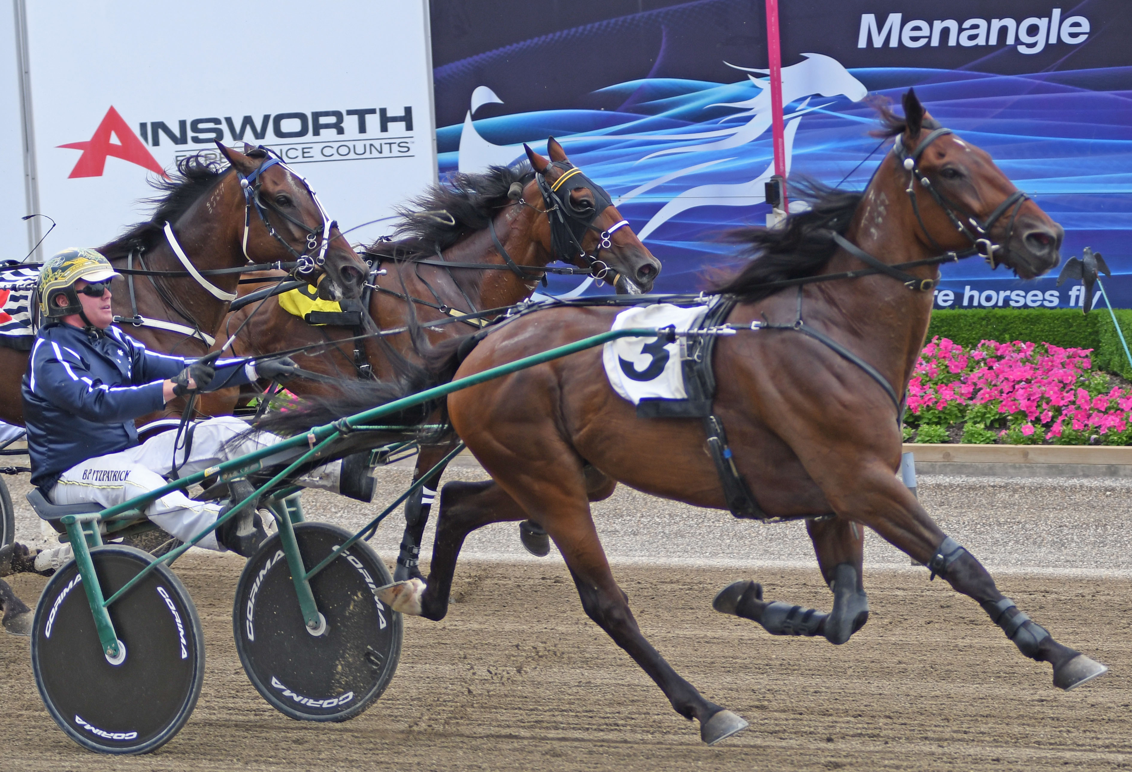 Butt brothers set for field day at Menangle