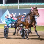 Connections hoping for Group One cash flow