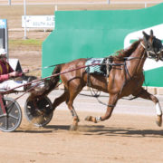Trotter's perfect record at risk