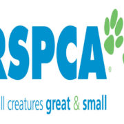RSPCA called to investigate farrier's cruelty