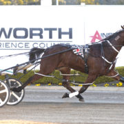 Big wrap on lightly-raced APG purchase