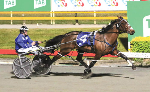 Breeders' Crown contenders can breathe easier