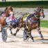Sirocco gives rivals windburn