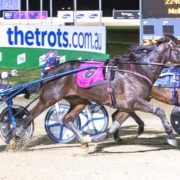 Controversial result in Group One Trot