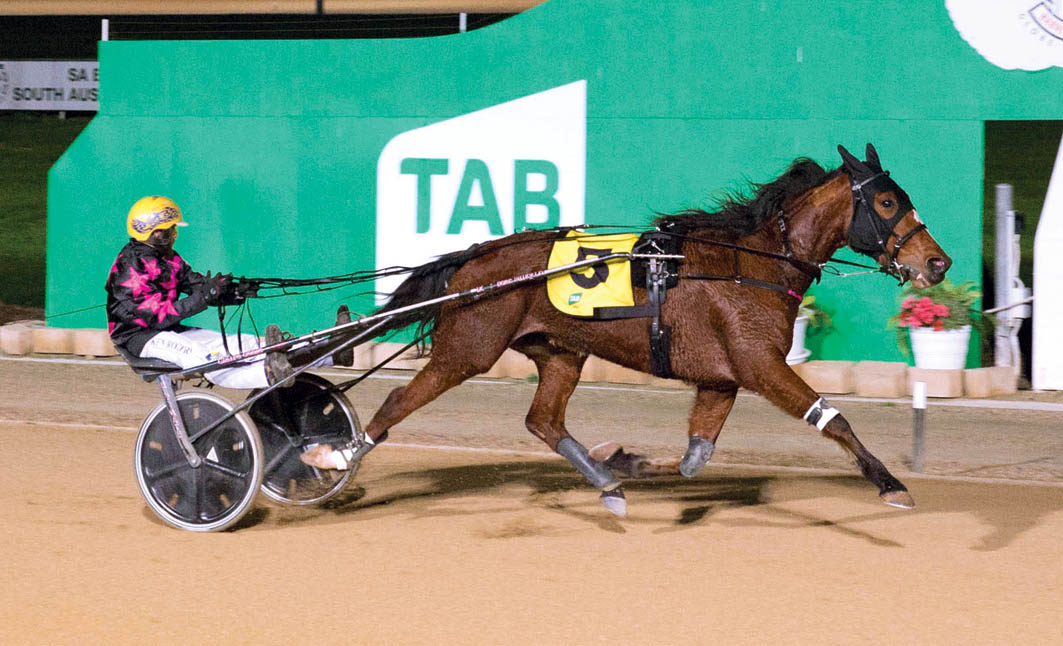 Talented trotter's tough task