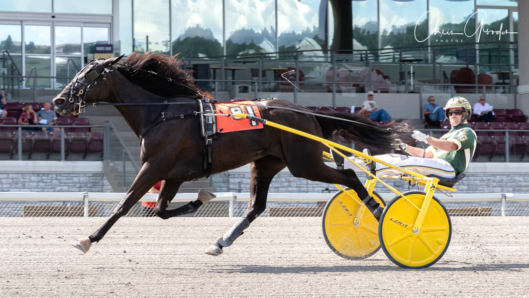Talented trotter remains unbeaten