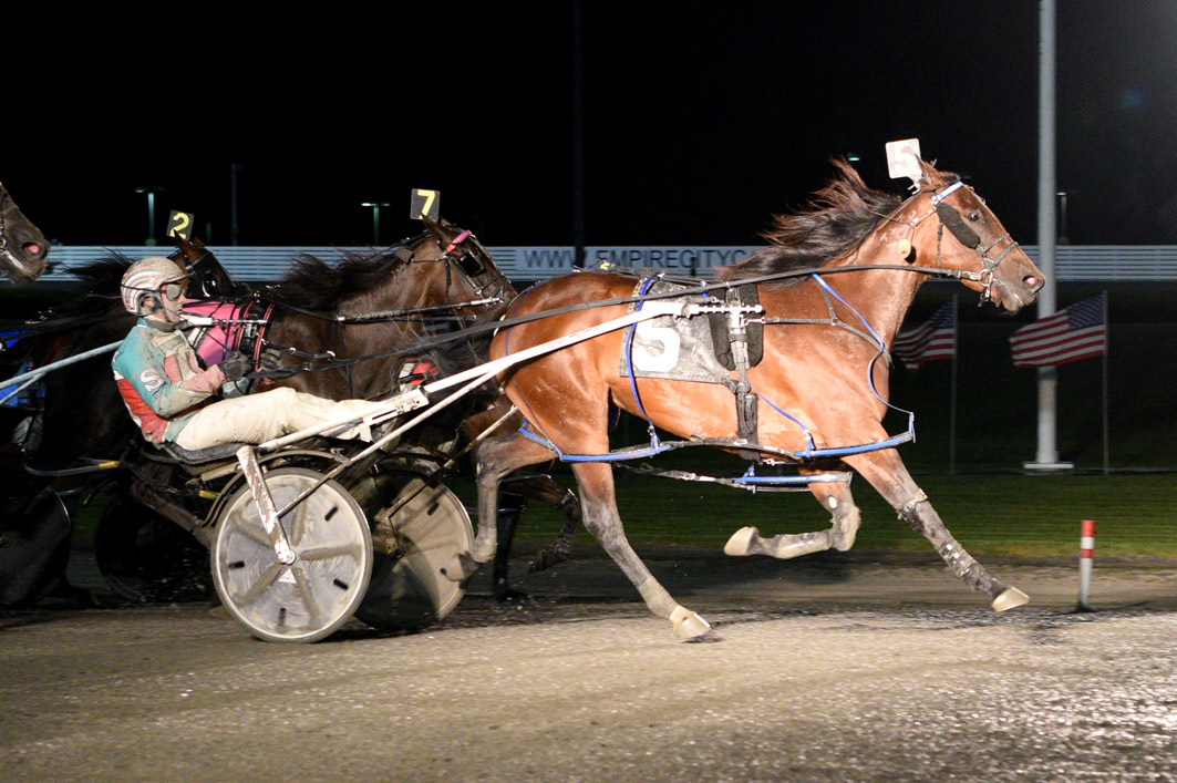 Former Kiwi mare too slick in USA