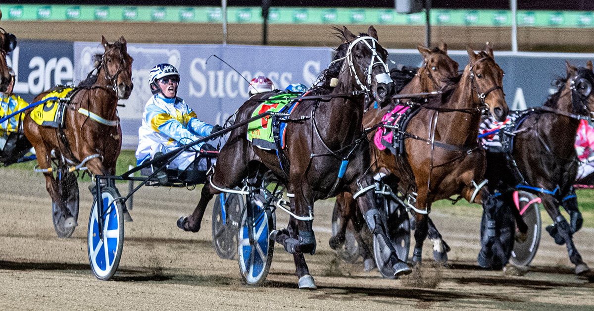 Ison's Menangle double is a night to remember