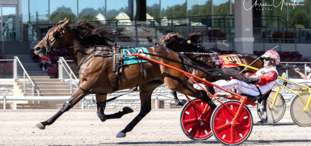 Talented trotter too slick in Classic