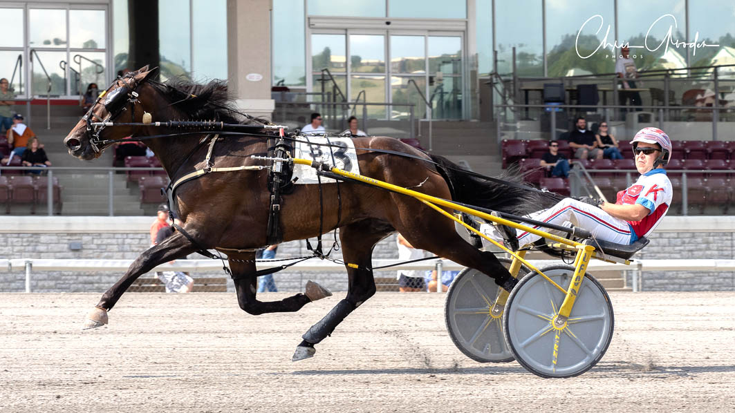Talented trotter's track record
