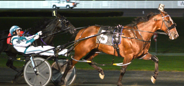 Former Kiwi too sharp at Yonkers