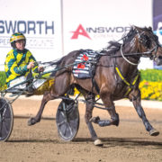 Retirement looms for handy mare