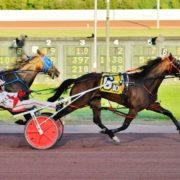 Aussie too tough at Yonkers Raceway
