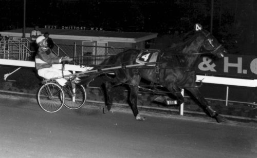 Feature to honour freakish pacer