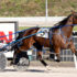 Former claimer wins Meadows feature