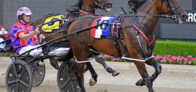 Rue back to chase a Menangle double