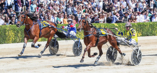 Aussies prominent in trot rankings