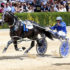 Inter Dominion winner retired to stud