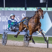 Rising star aimed at premier sprint