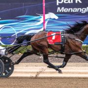 Star colt strengthens grip on Final