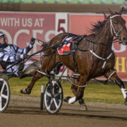 Mike Ko'cass previews Menangle