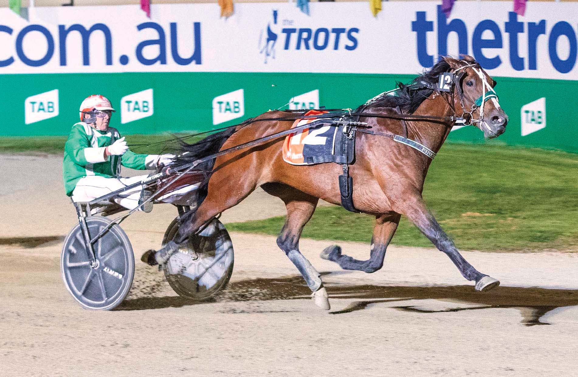 Third time's a charm for top trotter