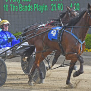 MIKE KO'CASS PREVIEWS MENANGLE SATURDAY NIGHT