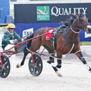 MIKE KO'CASS PREVIEWS MENANGLE'S NIGHT OF STARS