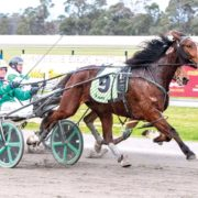 Chasing second Trotters' Cup victory
