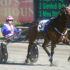Streisand in tune for return to racing