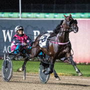 Major contender scratched from Ballarat Cup
